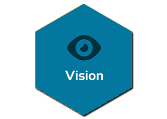 Our_vision_img
